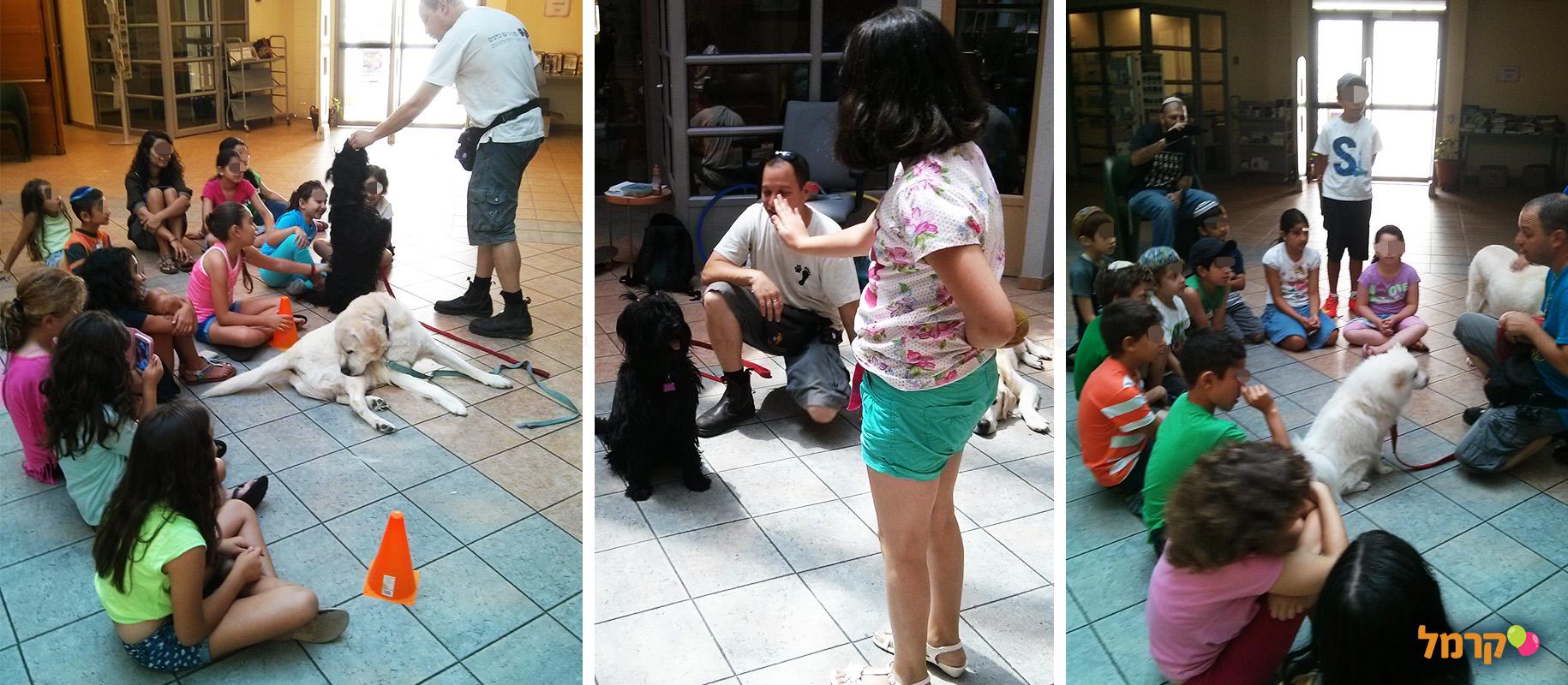 מכשכשים עם כלבים - 073-7026457