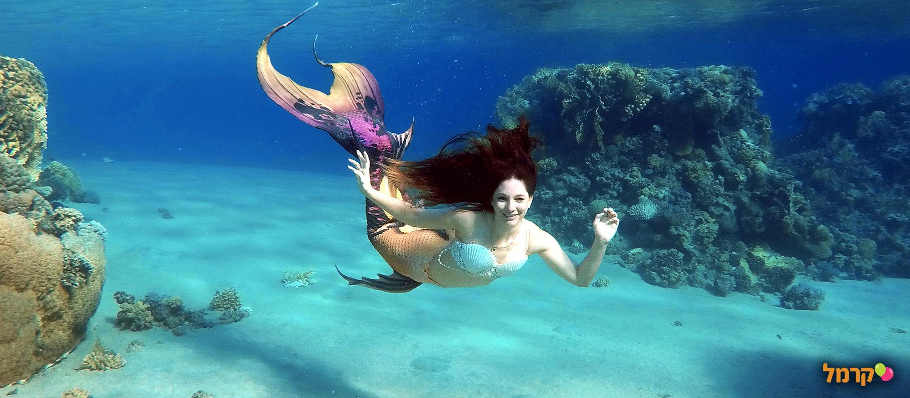 עולם בת הים - 073-7026692
