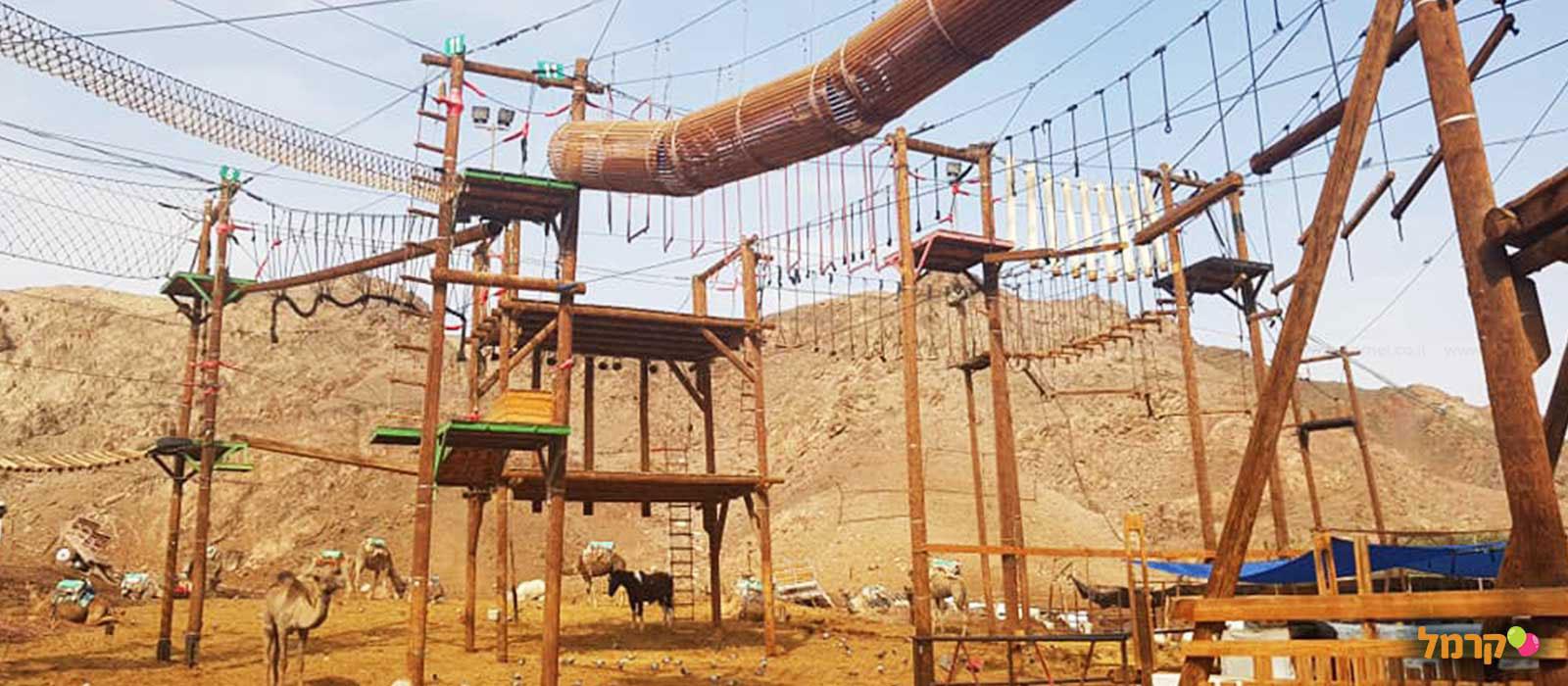 חוות הגמלים אילת - 073-7822683
